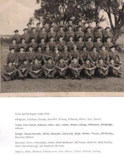 Pucka_1954.jpg