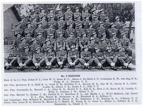 3PL_1955S.JPG